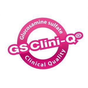 gs-clini-q-logo